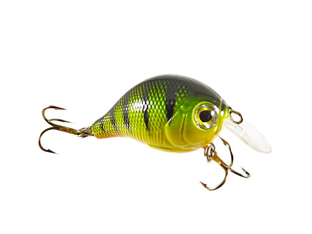 Indexbild 3 - Calypso Chubby Chaser Ultra Light Crankbait Mini Wobbler Barsch Forelle